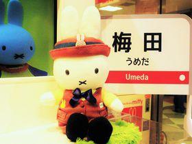 可愛いにゃ〜!梅田で買える!大阪観光で人気の旅土産はコレ