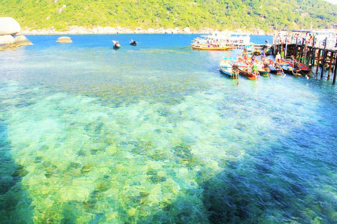 アジアで一番!素晴らしい海を楽しみましょう