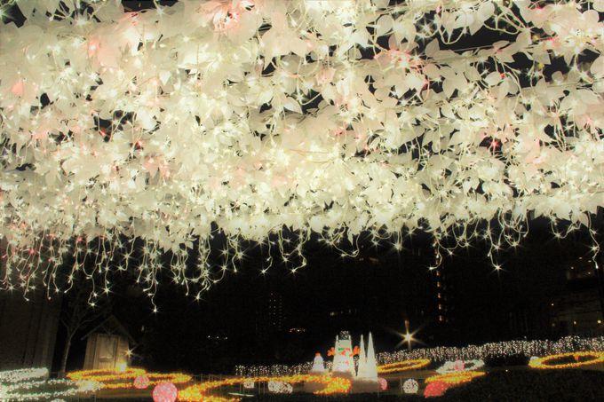 闇夜に浮かぶ光の回廊!幻想的な「天満・桜ノ宮 光のエレガンス」