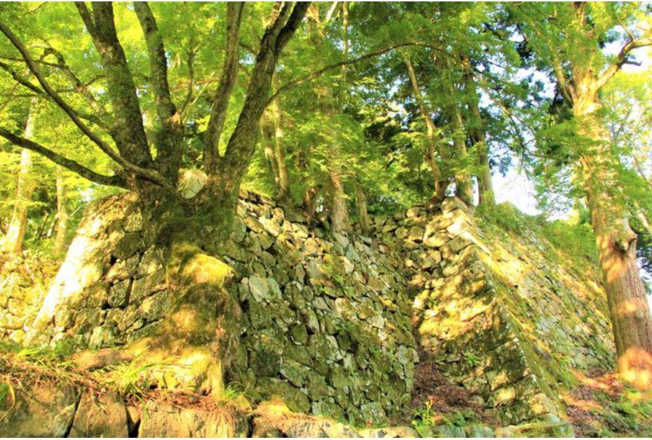 日本最大の山城!「高取城」とは?
