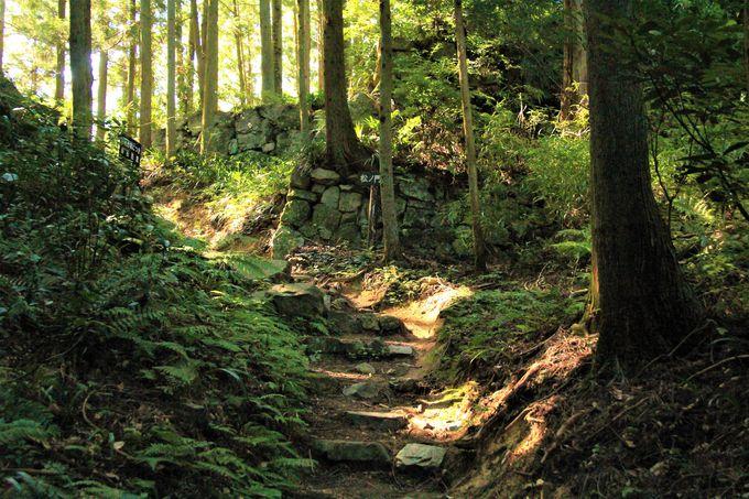 奈良の天空の城「高取城跡」へのアクセス、行き方、駐車場は?