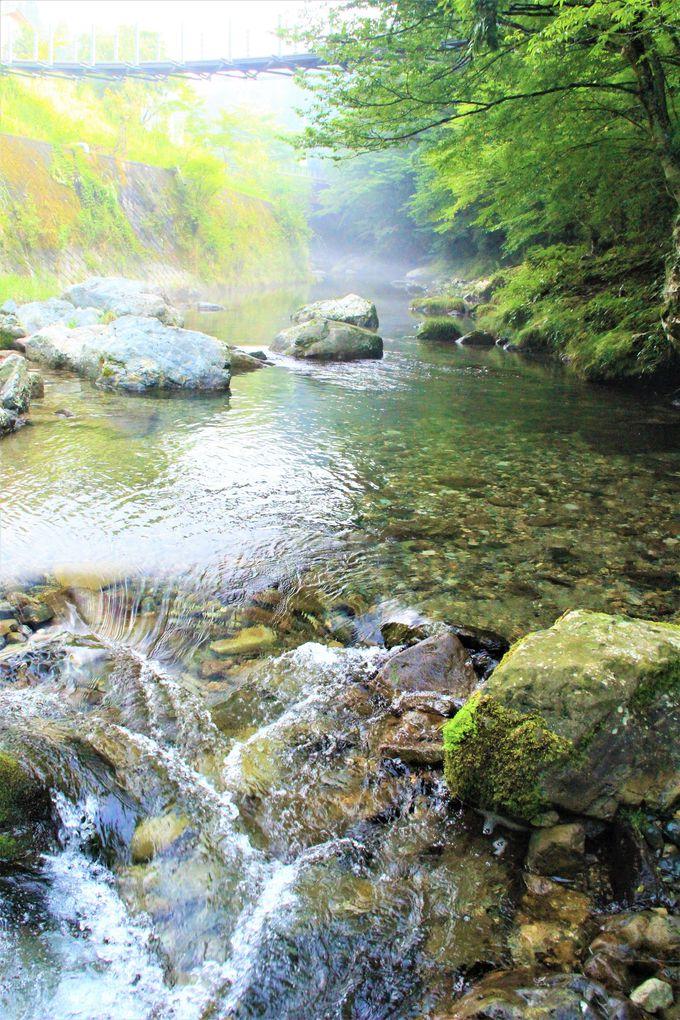 天川村「みたらい渓谷」の超穴場ハイキングコース!「観音峯登山口休憩所」で川遊び&登山も