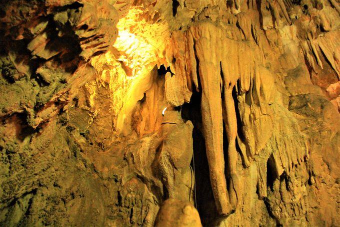 神秘的な洞窟探検!奈良県天川村の「五代松鍾乳洞」は意外と広い