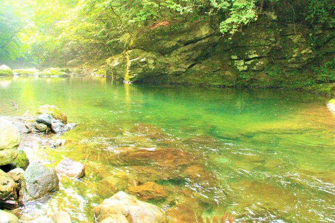 奈良県天川村「みたらい渓谷」の川の遊びやハイキング、「洞川温泉」の日帰り温泉もおすすめ