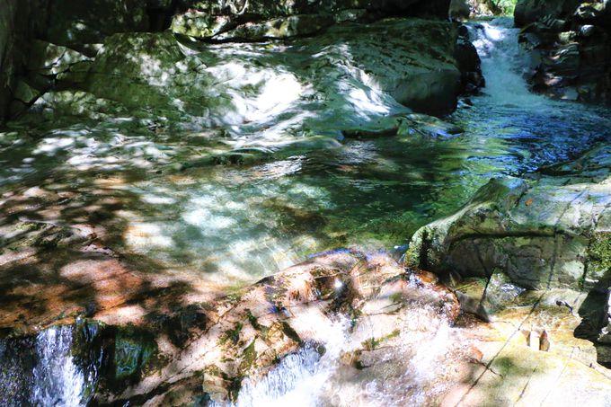 洞川温泉から河鹿の滝コースも
