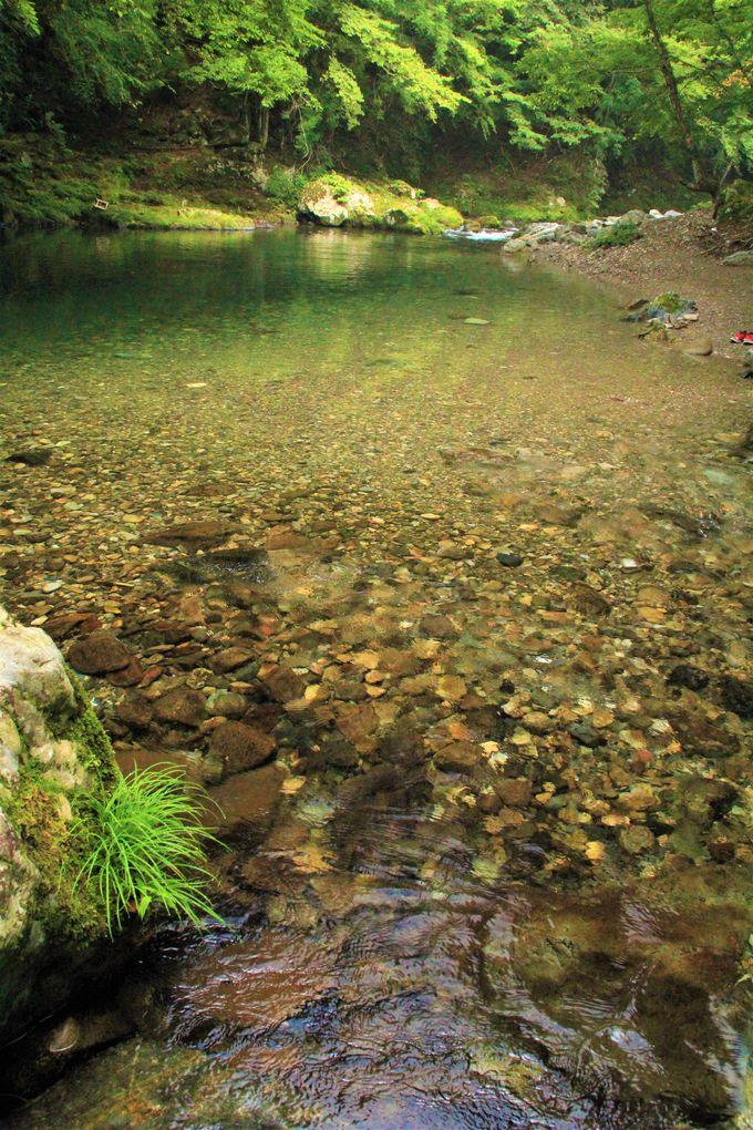 「観音峯登山口休憩所」は超穴場の川遊びスポット!「観音峯」への登山もおすすめ