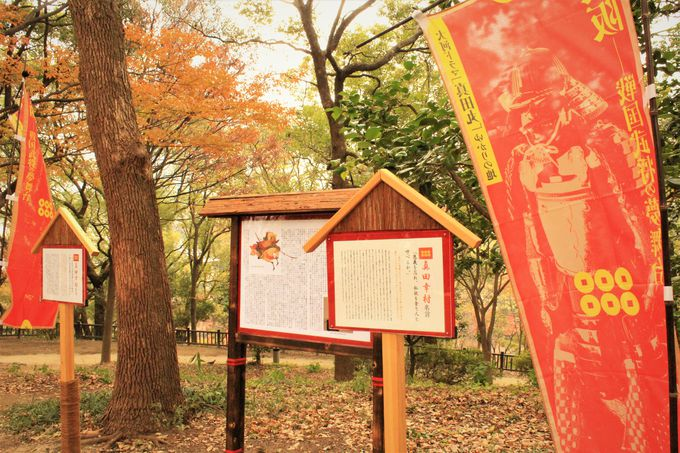 幸村、最後の本陣「茶臼山」