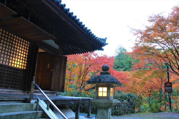 京都で超穴場の紅葉&観光スポット!奥嵯峨野の「愛宕念仏寺」(おたぎねんぶつじ)へのアクセス、行き方