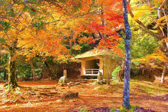 関西の紅葉の穴場スポット!吉野山・奥千本の「西行庵」