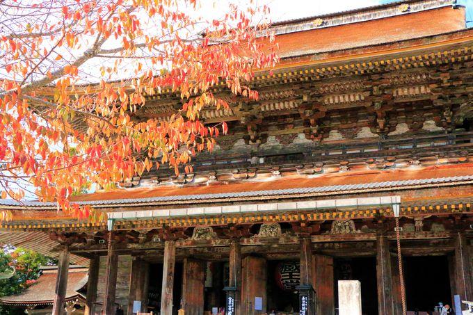 吉の観光の定番!金峯山寺蔵王堂
