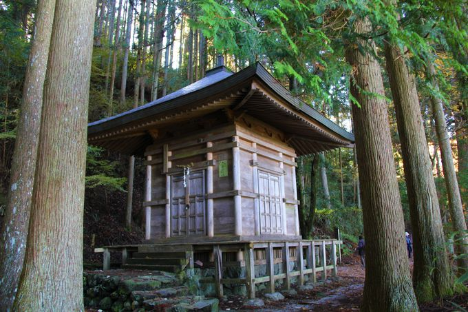 吉野の人気観光スポット!吉水神社/金峰神社/義経隠れ塔