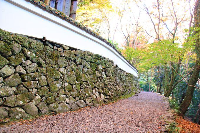 日本最古の漫画!国宝の石水院も見どころ!「高山寺」(栂尾)