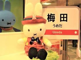 大阪観光の意外な穴場!梅田の無料空中庭園×癒しのスポット