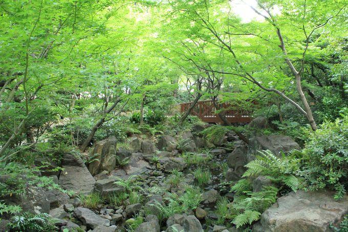 梅田の癒しの森「中自然の森」/穴場の恋愛成就パワースポット「綱敷天神社 御旅社」