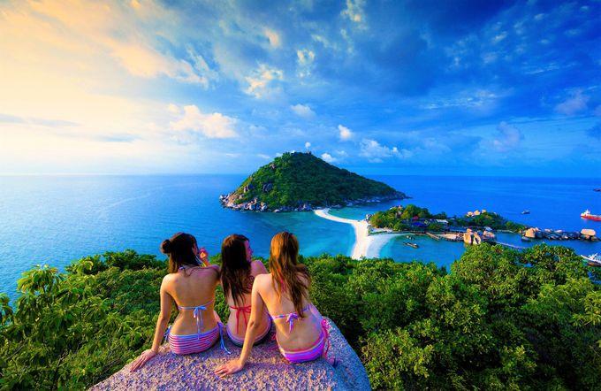抜群に海が美しい!タオ島、サムイ島海域などでジンベエザメにも遭遇