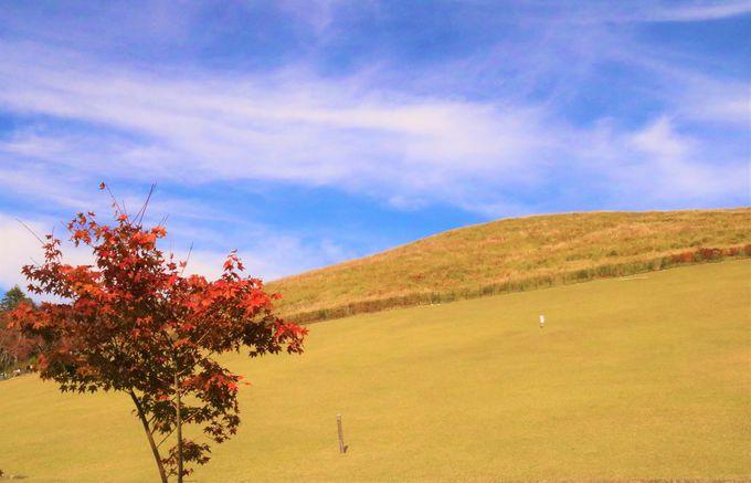 帰りに寄りたい!浮見堂、奈良奥山
