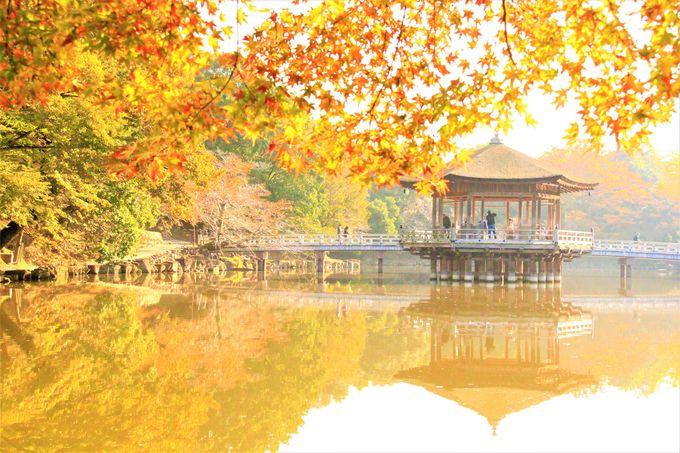 3.浮見堂/奈良市