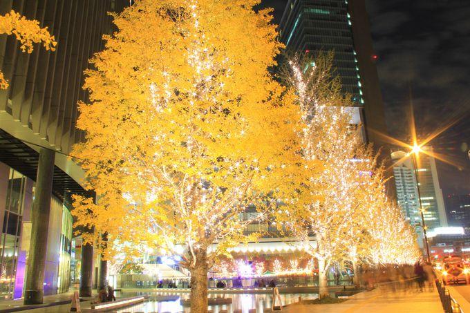クリスマス・イルミネーションの穴場!グランフロント大阪