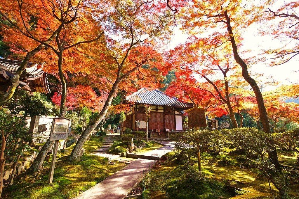 京都・紅葉名所&穴場!清閑寺/隋心院/金閣寺