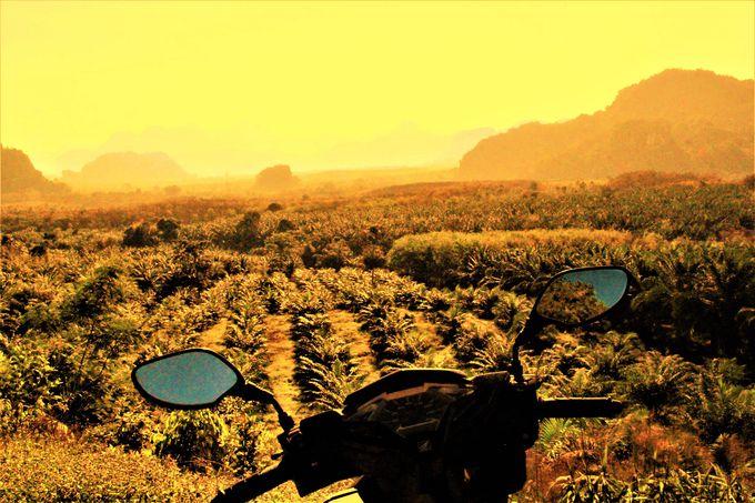 絶景の海「カオラック」、廃墟の街「オールド・タクアパ・タウン」、世界最古のジャングル「カオソック」