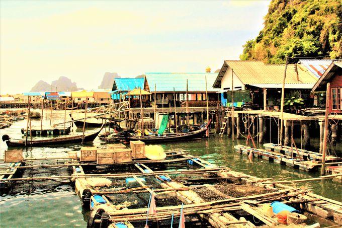 パンガー湾の島巡りもおすすめ!絶景の「ジェームズ・ボンド島」、神秘の秘島「パンイー島」