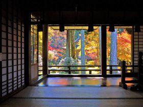京都観光の穴場!大原三千院から寂光院へ、紅葉散策ぶらり旅