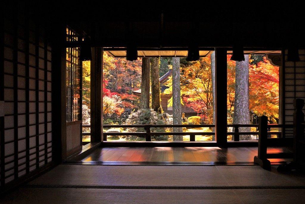 京都 観光 穴場