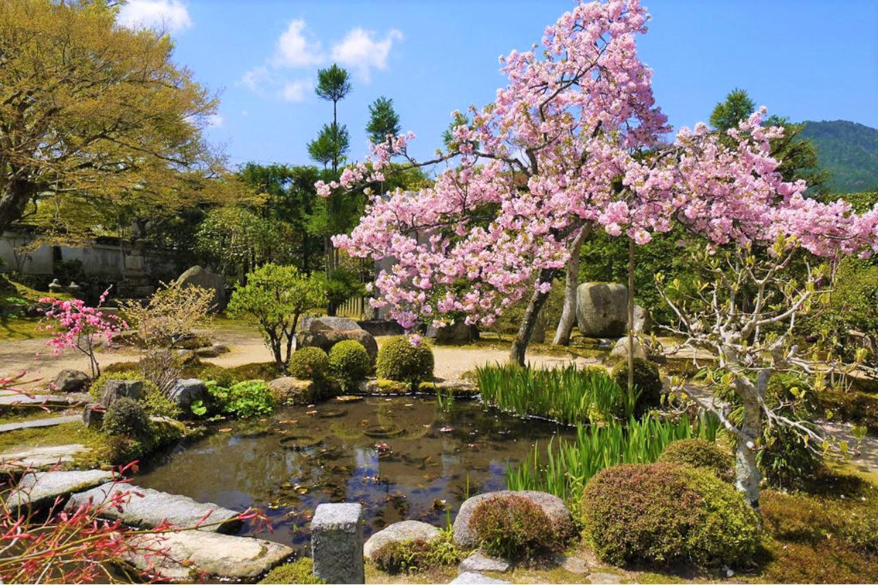 実光院、京都土産巡りも楽しもう