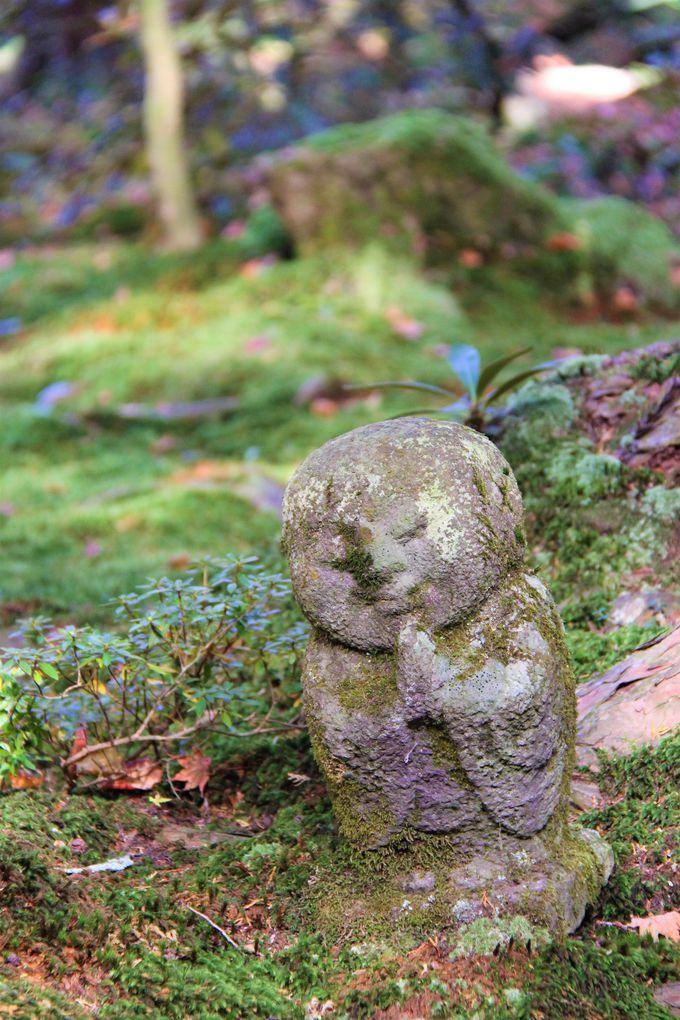 「京都・大原・三千院」の癒しとは?