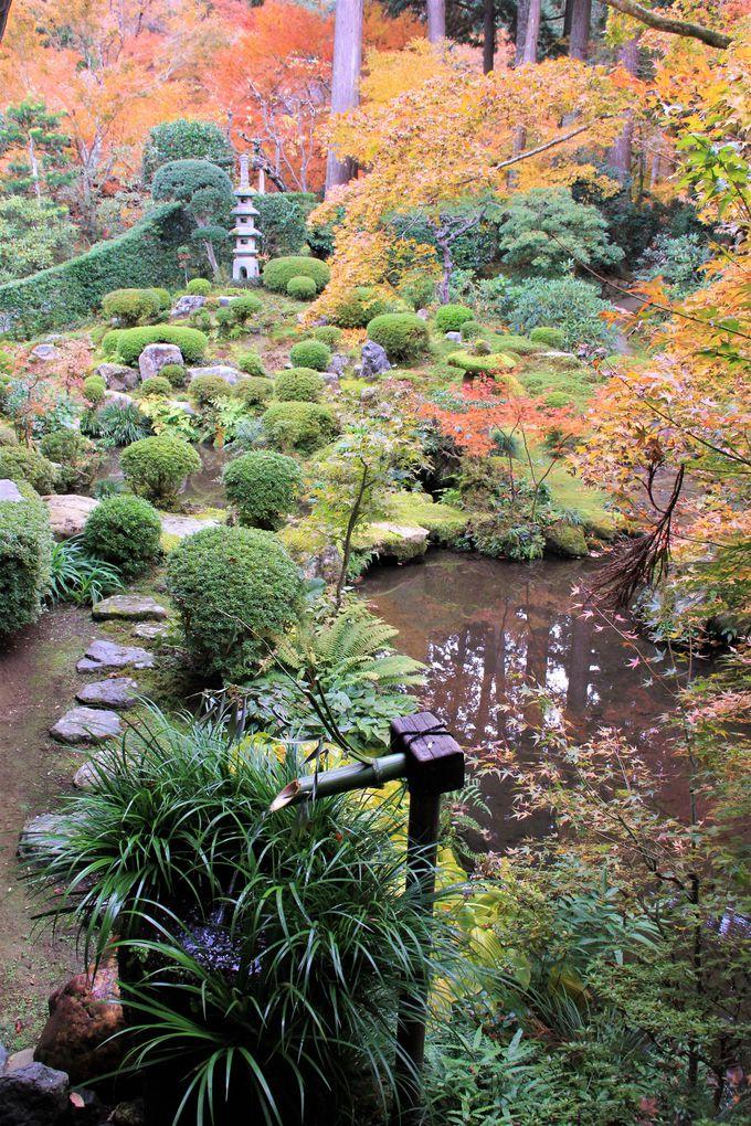 「京都・大原・三千院」へのアクセス、駐車場、混雑回避のコツは?