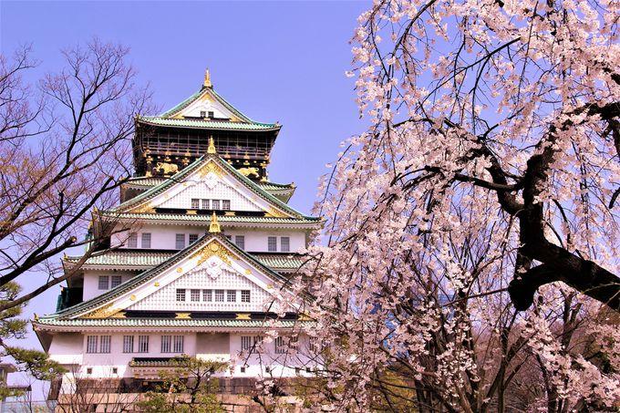1日目午前:まずは豊臣秀吉が築城した城、大阪城へ