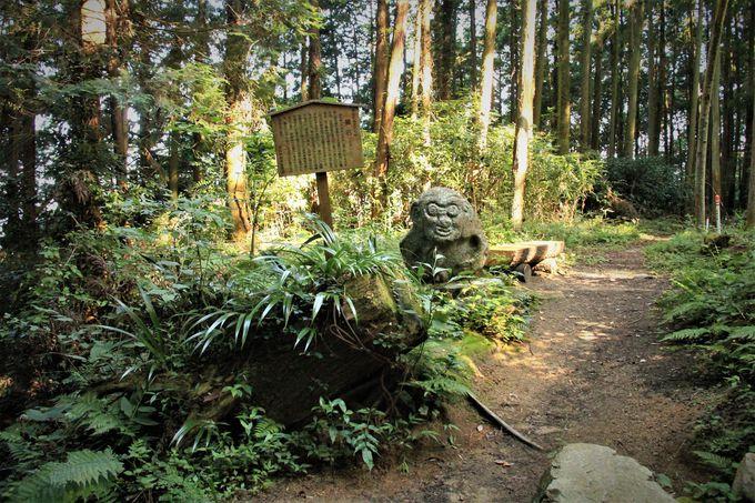哀しくも清浄なミステリアスなパワー!大津皇子の墓/高取城の猿石/行者還トンネル