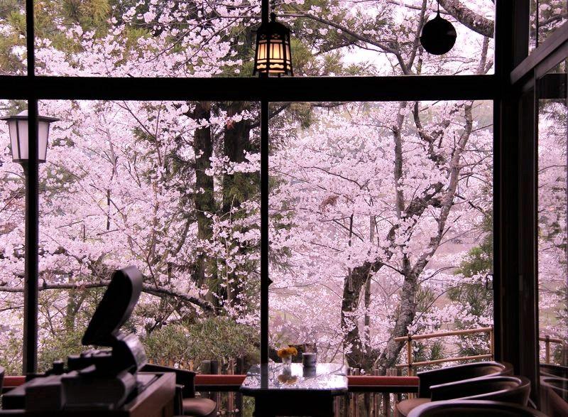 """""""100年のホテル""""奈良ホテルで優雅なひととき!ヘップバーンが絶賛"""