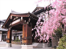 のんびり幸福な日本の原風景!奈良県おすすめ観光スポット