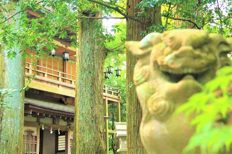 「洞川温泉」と「みたらい渓谷」でのんびり奈良旅!「天河神社」は癒しのスポット