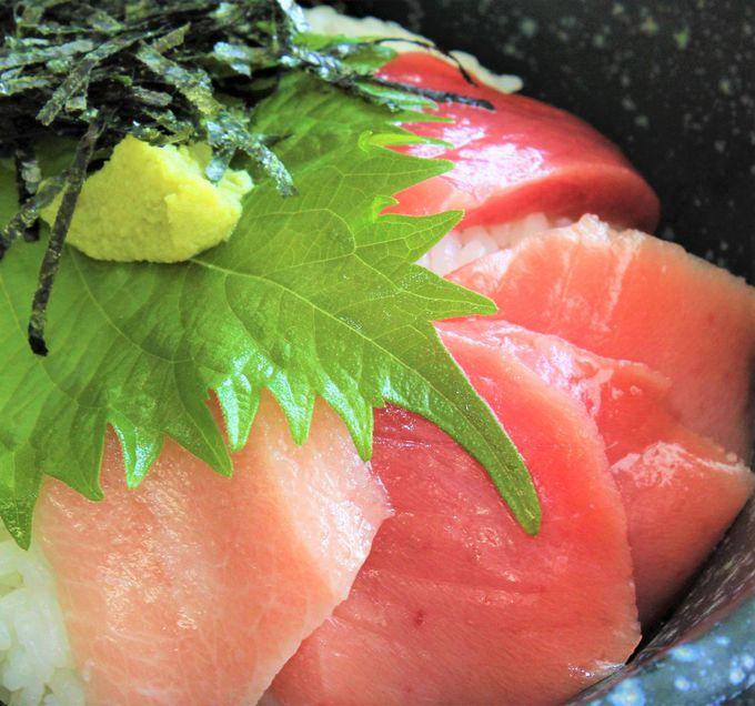 潮岬タワーの絶品グルメ!「近大・本マグロ」と「マグロメガ天丼」