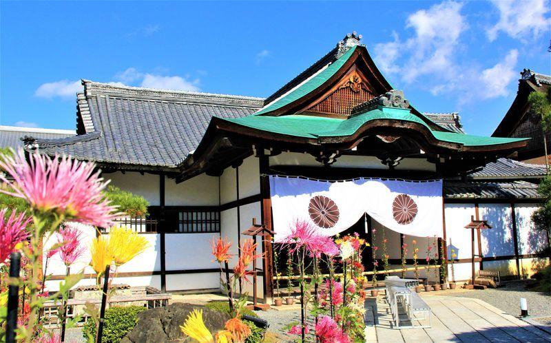 「京都 嵐山 大覚寺」 恋に疲れた心もやがて元気に