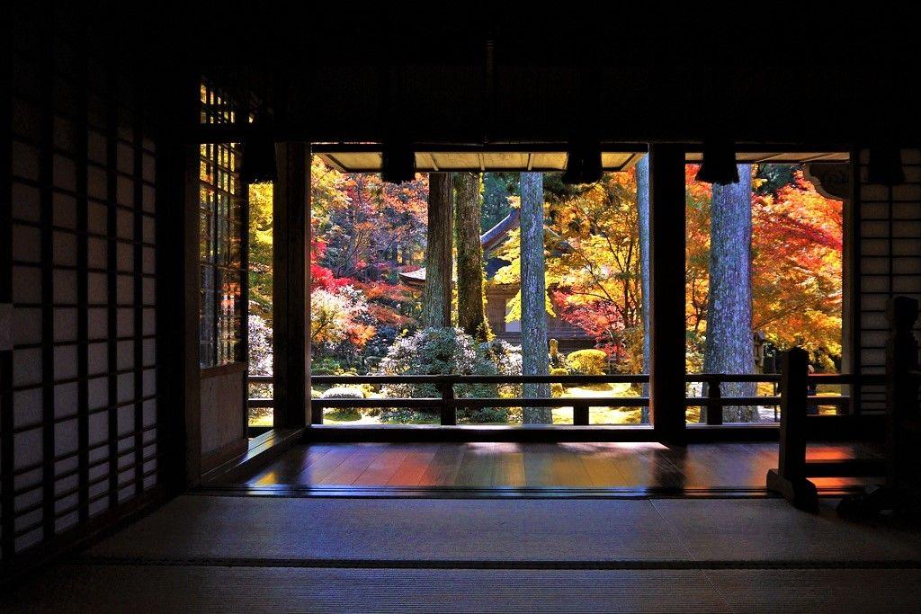 「京都 大原 三千院」 愁いを秘めた女がひとり
