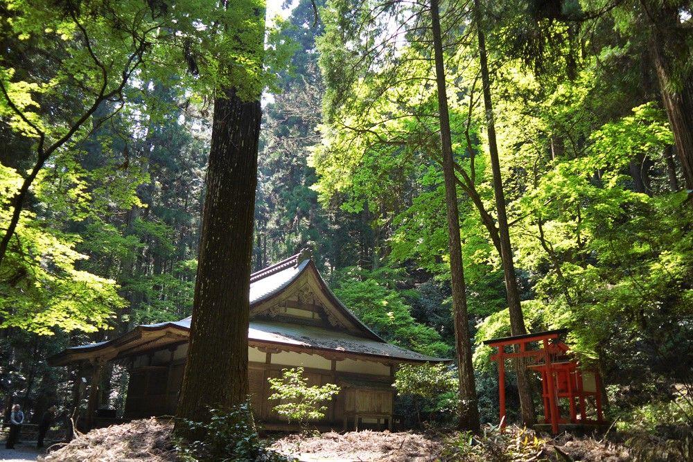 「京都 栂尾(とがのお)高山寺」 無垢な優しさを秘めた山寺