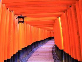 初詣もおすすめ!京都観光で人気のパワースポット神社15選