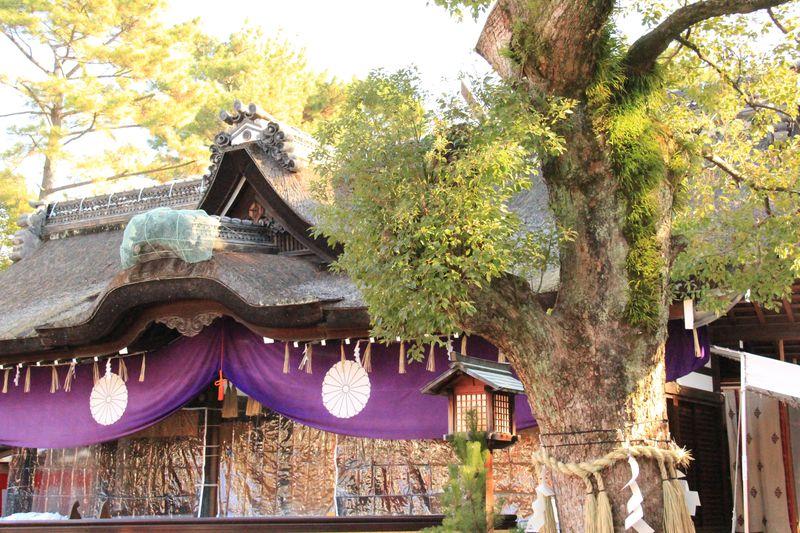 年末年始は大阪で!おすすめ観光スポット・過ごし方6選