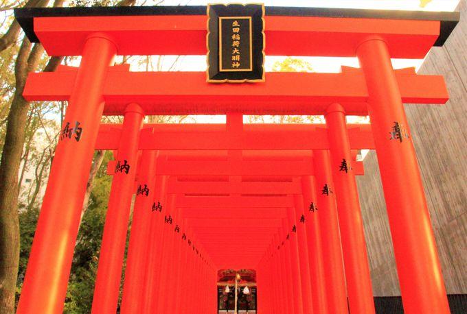 見どころが多い生田神社!楼門、蛭子神社、稲荷神社は撮影スポット