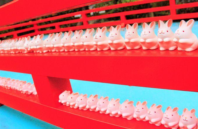 「岡崎神社」のうさぎ/晴明神社の「羽生結弦選手の絵馬」/祇園の「辰巳大明神」