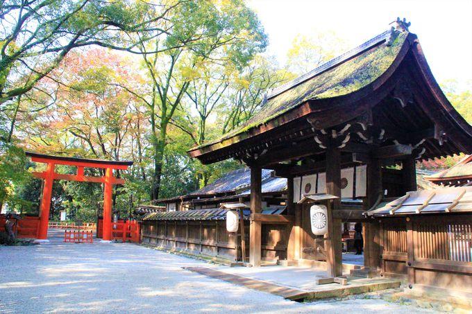 身も心も美しく!美人祈願の鏡絵馬で知られる美のパワースポット「河合神社」/癒しの「糺(ただす)の森」