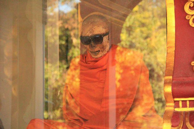 サングラスをかけたおしゃれなミイラ僧侶