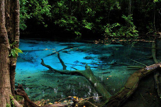 タイの秘境「ブループール(Blue Pool)」