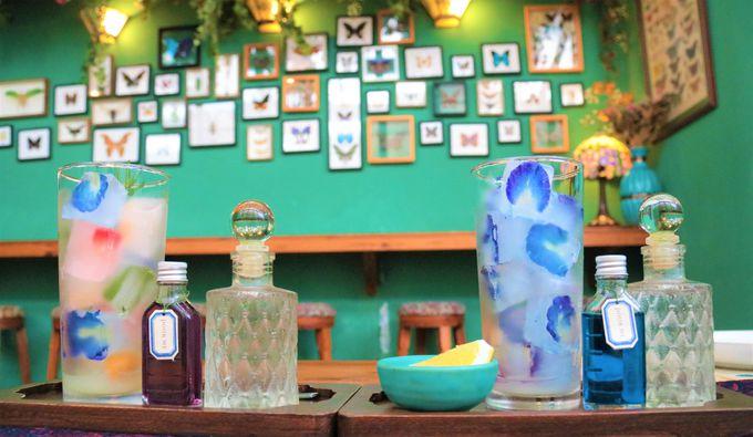 可愛いバンコクの穴場カフェ/クリスマスのイルミネーション