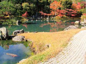 世界遺産・京都「天龍寺」の名庭園!紅葉の見どころ&見ごろは?