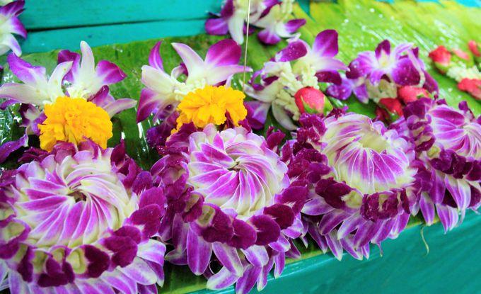 バンコク観光の穴場!パーククローン花市場/ブルーホエール/マンゴー タンゴ