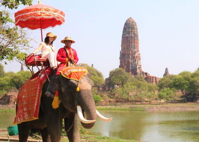 1.アユタヤ遺跡と象乗り体験ツアー